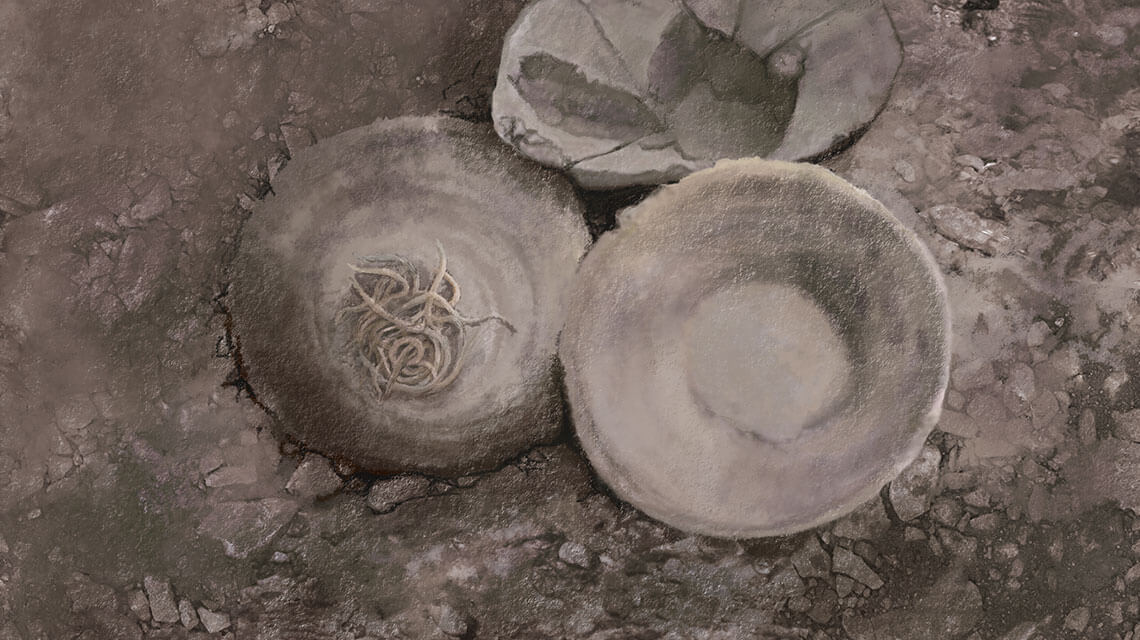 4,000 year-old bowl of noodles